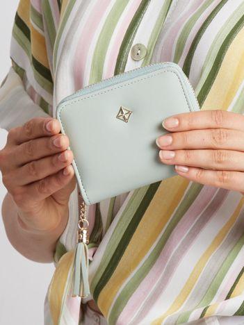 Jasnozielony mały portfel