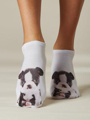 Skarpety stopki damskie z psem