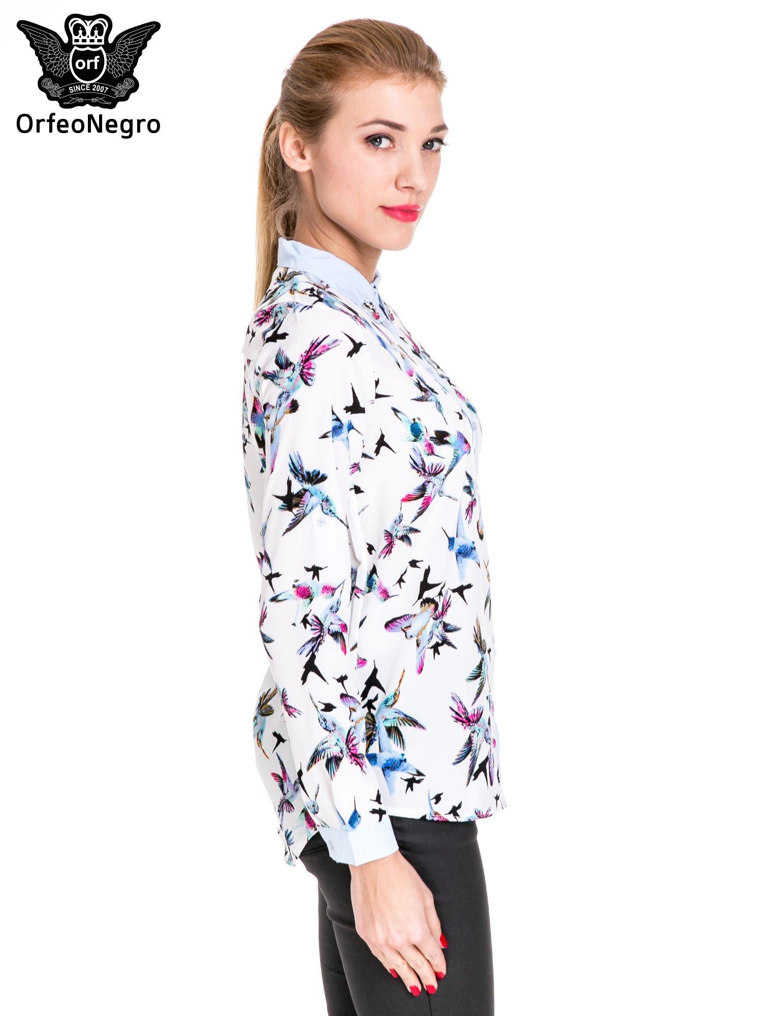 Koszula w kolibry z błękitnym kołnierzykiem, mankietami i listwą                                  zdj.                                  3