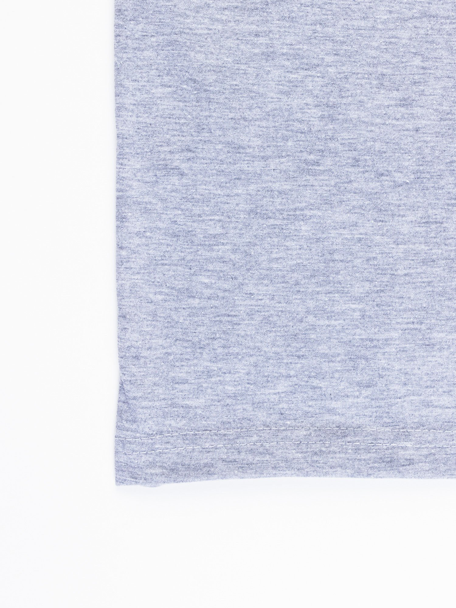 Szary t-shirt męski LOONEY TUNES                                  zdj.                                  13