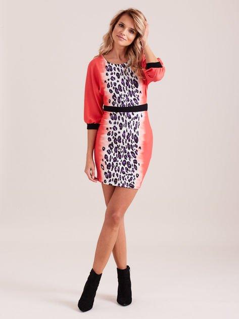 Koralowa sukienka z motywem panterki i czarnym paskiem                                  zdj.                                  5