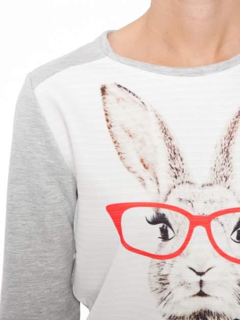 Szara dresowa bluza z nadrukiem królika                                  zdj.                                  5