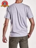 Szary t-shirt męski LOONEY TUNES                                  zdj.                                  5